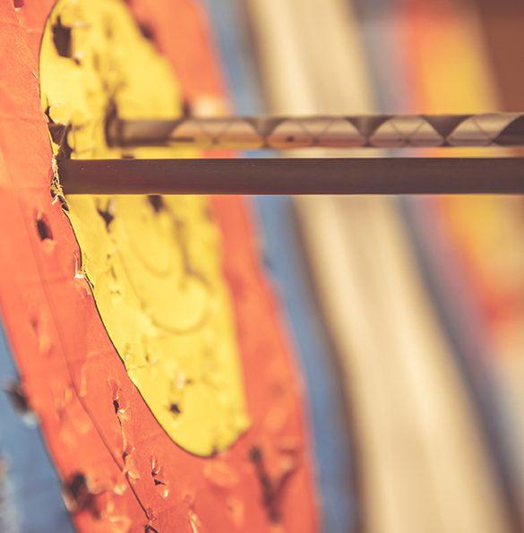 Swelife fokuserar och sätter ny målbild